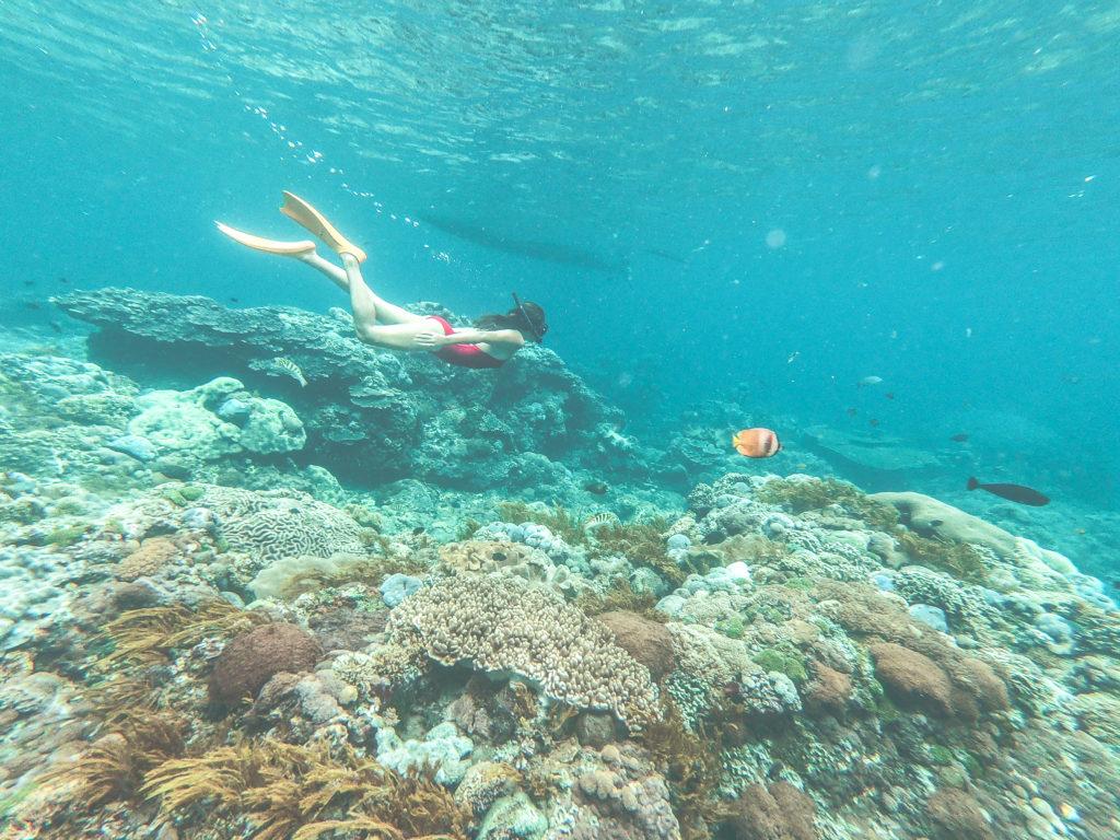 snorkelling Nusa Penida