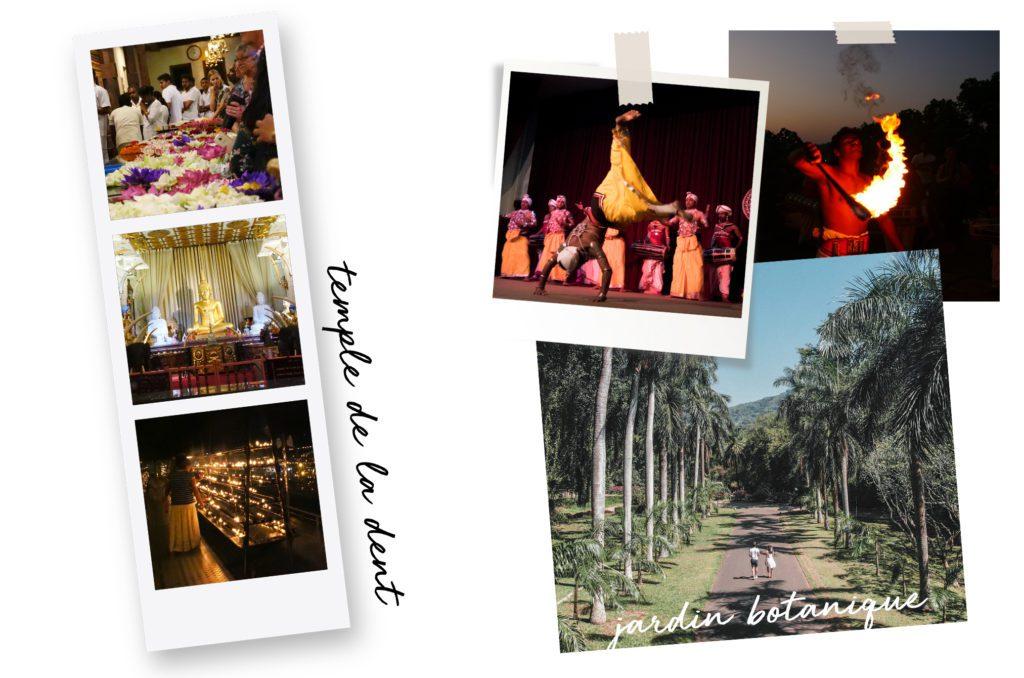 10 jours au Sri Lanka