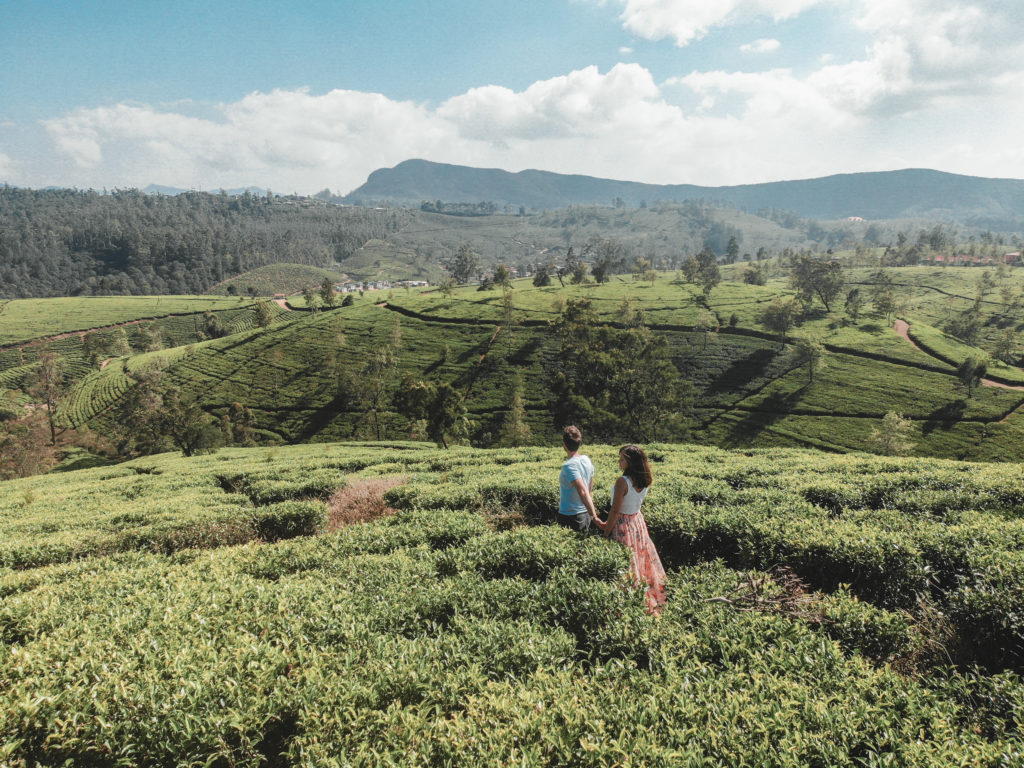 Sri Lanka plantations de the