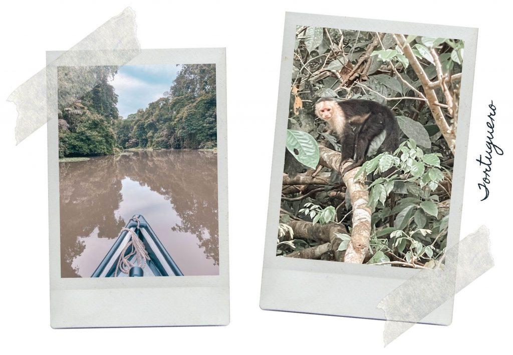 itinéraire 2 semaines au Costa Rica